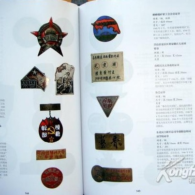 China Centuries Lapel Pins Illustrations Content