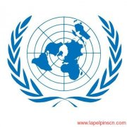United Nations Lapel Pin Obtained With Skilled Craft
